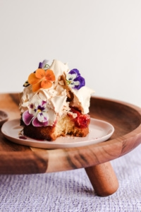 Plum and Coconut Louise Cake